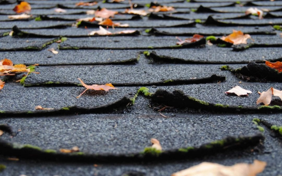 signs you need a new roof include curling shingles