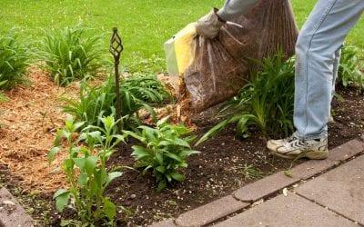 Spring Landscaping & Lawn Maintenance